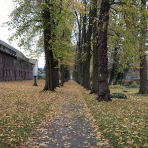 Friedhofswall